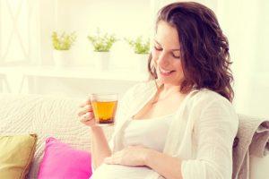 Можно ли мяту беременным в 1 триместре