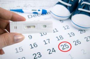 По овуляции срок беременности