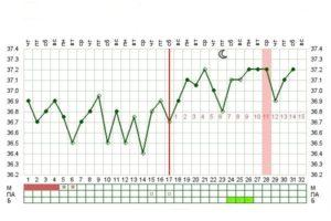 Температура на 3 неделе беременности