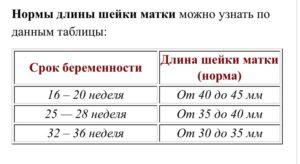 Длина шейки матки на 36 неделе беременности