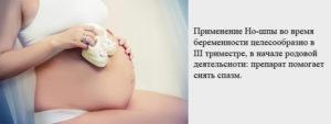 Можно ли пить ношпу при беременности во втором триместре