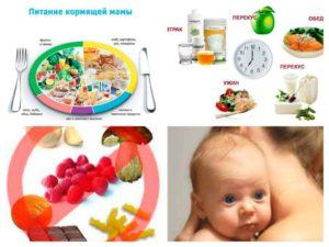 Правильное питание для кормящих мам с новорожденным