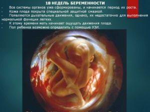 Головокружение на 18 неделе беременности