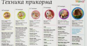 Когда вводить мясо в прикорм ребенку на искусственном вскармливании