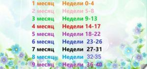 32 неделя беременности сколько это месяцев таблица
