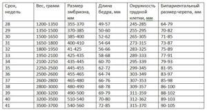Вес ребенка в 20 недель беременности норма таблица