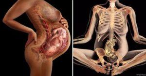 Болит лобковая кость беременность 33 недели