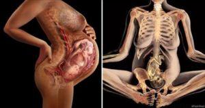 Боли в тазу на 34 неделе беременности