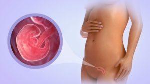 6 неделя беременности живот болит как при месячных