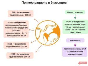 Кормление 6 месячного ребенка