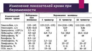 Лейкоциты в крови при беременности 3 триместр норма