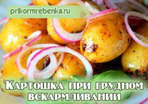 Можно ли картофель кормящей маме