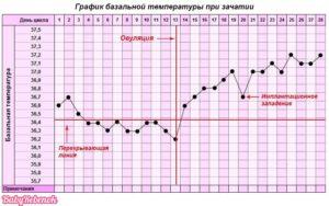 Температура на 40 неделе беременности