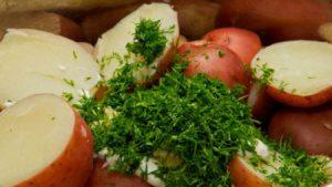 Можно ли картошку жареную кормящей маме