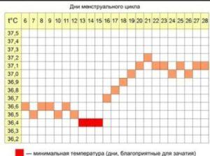 Как при нерегулярном цикле определить овуляцию