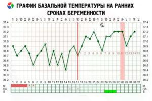 Температура тела на 8 неделе беременности