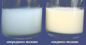 От чего может пропасть молоко у кормящей мамы