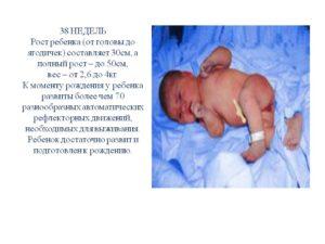 38 недель беременности вес и рост ребенка
