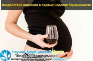 Алкоголь в первые недели беременности