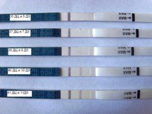 Задержка 4 недели тест отрицательный может ли быть беременность