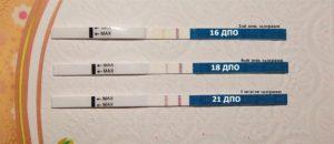 Тест на беременность через 2 недели после зачатия