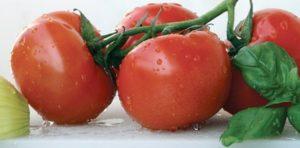 Можно ли кормящей маме есть помидоры свежие