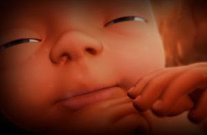Памперс 25 неделя беременности