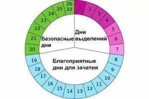 Зачатие ребенка календарь овуляции