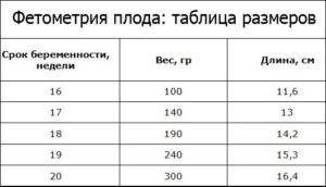 Фетометрия плода на 32 неделе беременности таблица