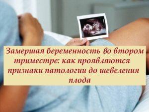 Какие признаки замершей беременности в первом триместре