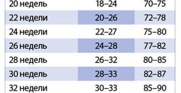Окружность живота на 29 неделе беременности норма
