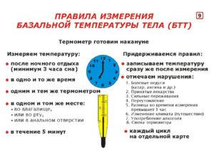Как измерить базальную температуру для определения овуляции
