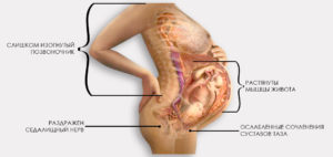 Болит копчик на 39 неделе беременности