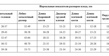 Фетометрия плода на 20 неделе беременности норма