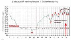 Температура на 16 неделе беременности
