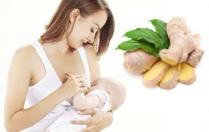 Имбирь кормящим мамам можно ли