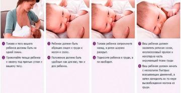 Как приложить ребенка при кормлении в первый раз